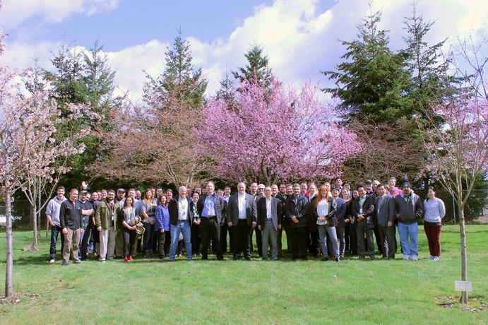 A group of people standing in front of a cherry blossom tree